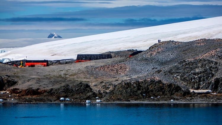 Antarctica Esperanza Argentina Getty