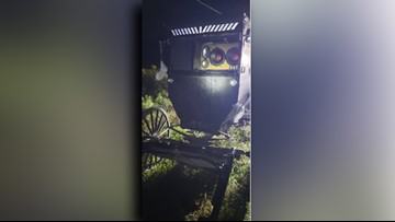 Amish buggy with stereo system, beer pulled over by Ohio deputy