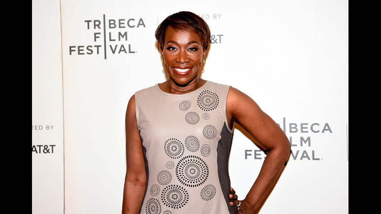 Joy Reid's Lawyer Says FBI Investigating Alleged Blog Hacking
