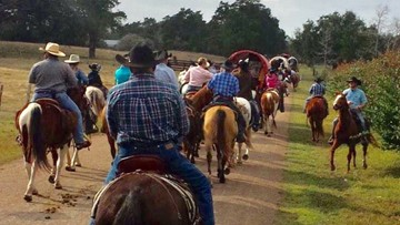 Driver hits, injures horse on Sam Houston Trail Ride