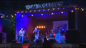 Tune Out Cancer Music Fest in Katy hopes to help children one song at a time