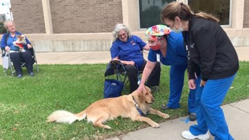 Volunteers and their dogs surprise healthcare workers at Clear Lake hospital