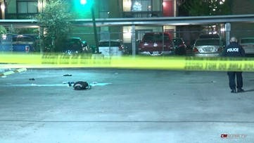 Woman on life support after being shot in the head during drive-by