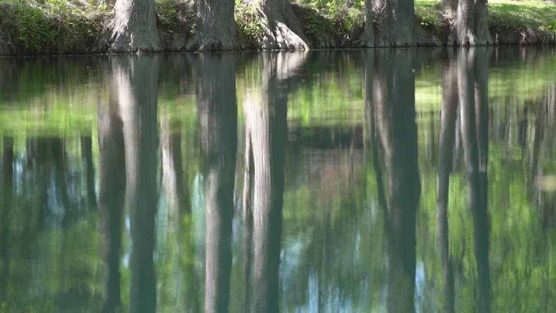 Road Trip Texas: Blue Hole Regional Park in Wimberley