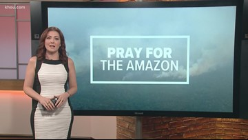 Trending in HTown: People spread the word with #PrayForTheAmazon
