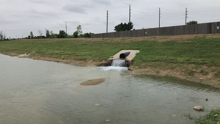 Gator spotted at Exploration Park in Katy