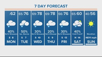 Houston, grab your umbrella out the door every day this week