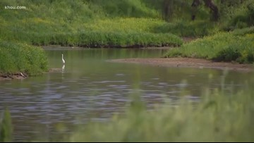 Support is growing for underground flood tunnels in Cypress