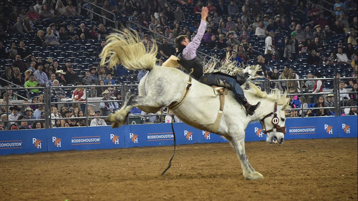 20 reasons you should go to the 2020 Houston Rodeo