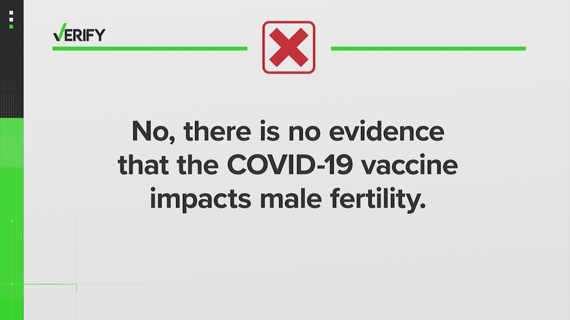 VERIFY: No, studies do not show the COVID-19 vaccine causes fertility issues in men