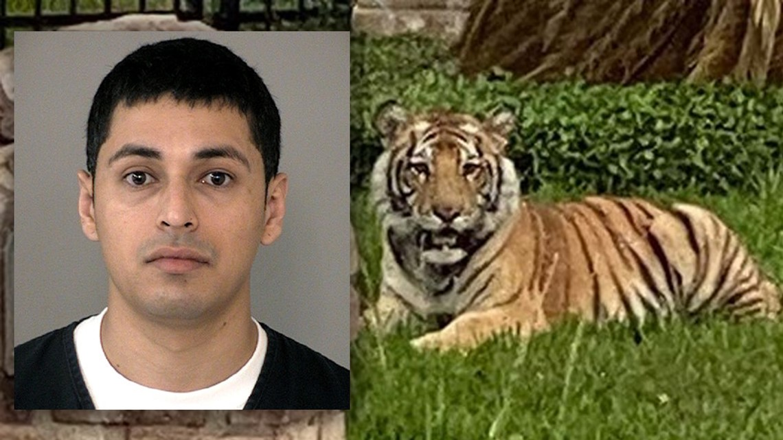 Where's the Houston tiger? New mugshot shows Victor Cuevas in Fort Bend jail | Top headlines