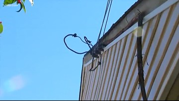 Wires down in your yard: Who is responsible?