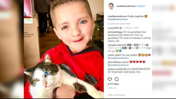 Bullied Boy Adopts Cat Who Shares His Differences