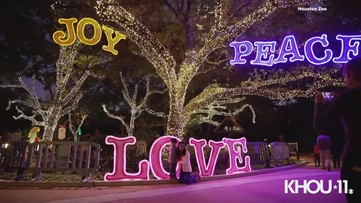 Zoo Lights returns later this month at Houston Zoo