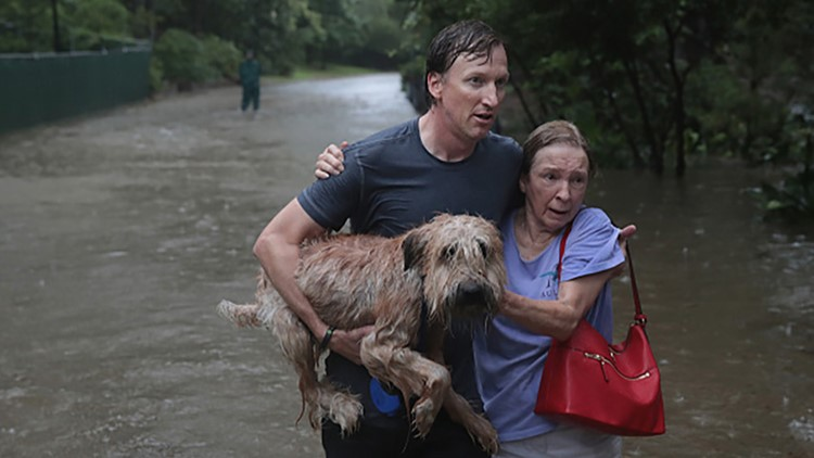Photos: Countless pets rescued during Hurricane Harvey