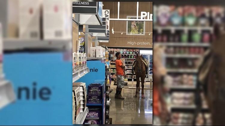 Horse in Petsmart Reddit_1535390663209.jpg.jpg