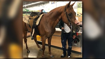 Only in Texas: Horse makes frequent visits to PetSmart in