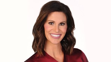 Stephanie Simmons | khou com