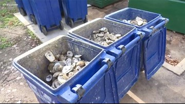 Restaurants recycle 850 tons of oyster shells to replenish reefs