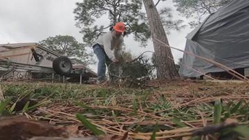 Trim trees, secure belongings ahead of heavy wind gusts Friday
