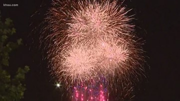 'It's all about keeping them distracted' | Shelters calm animals, offer advice for pet owners before fireworks