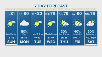 Houston Forecast: Delightful Sunday to Dreary Monday