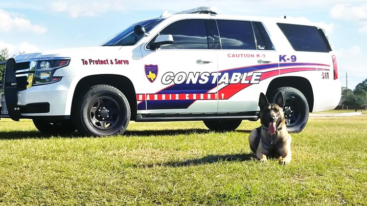Rudo retires | Harris County K-9 officer ends six-year career with more than 120 arrests