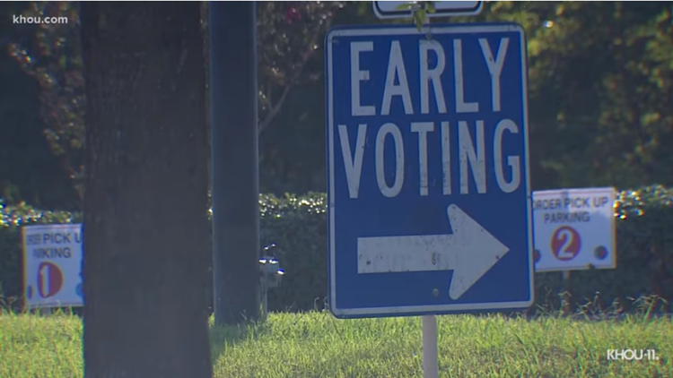 Early voting: What's on the ballot, what to bring and where to vote