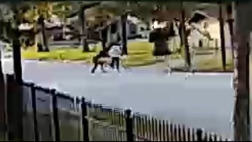 Houston purse snatcher knocks elderly woman to the ground face first
