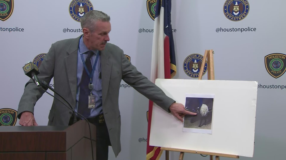 HPD updates on case of woman who was shot to death at SE Houston ATM