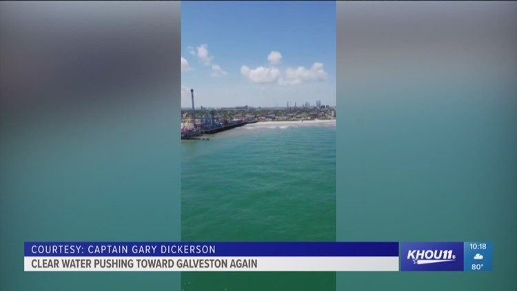 Clear water getting closer to Galveston again