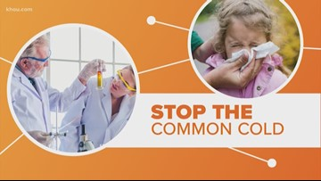 Connect the Dots: A cure for the common cold?