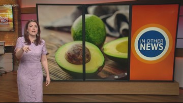 In Other News: Avocado prices are on the rise