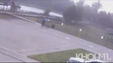 Video: Man struck by lightning while walking dogs in Spring