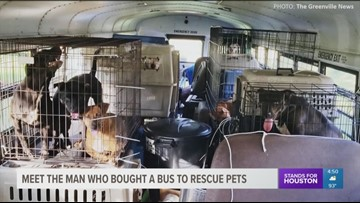 Man buys school bus to rescue pets during Florence