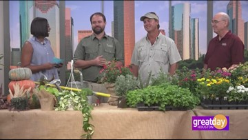 Gardening Show Q&A Part 3 with Dany Millikin, Joey Lenderman and Skip Richter