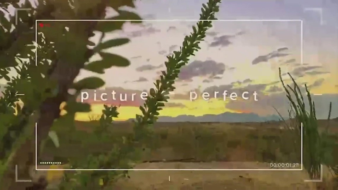 Picture Perfect: Moments of Zen