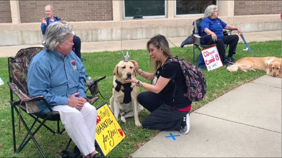 Photos: Healthcare workers surprised by group of volunteers and their dogs