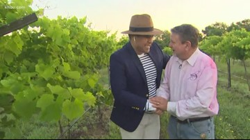 A closer look at the Berndhardt Winery in Plantersville