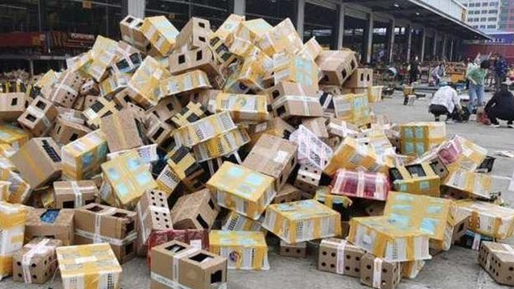 5,000 cats, dogs, rabbits, guinea pigs found dead in boxes at Chinese shipping depot