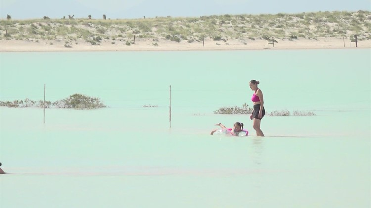 'Almost magical' | A little oasis has formed in the middle of the Texas desert