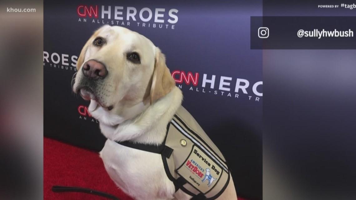 Sully H.W. Bush honored at CNN Hero Awards