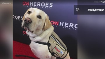 Sully H.W. Bush honored at CNN Hero Awards