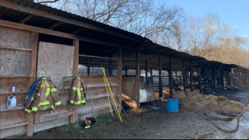 2 horses killed in Aldine-area stable fire