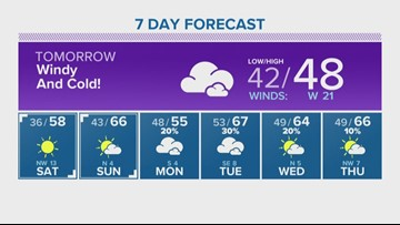 Houston Forecast: Leaves are drifting in gusty winds