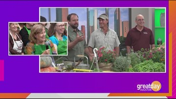 Gardening Show Q&A Part 2 with Dany Millikin, Joey Lenderman and Skip Richter