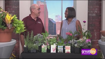 """Robert """"Skip"""" Richter is a Horticulture Agent with the Texas A&M AgriLife Extension Service"""
