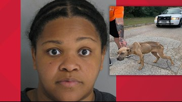 Woman accused of throwing malnourished dog from car along Harris County road