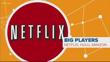CONNECT THE DOTS: What does Netflix price increase mean for the future of streaming?