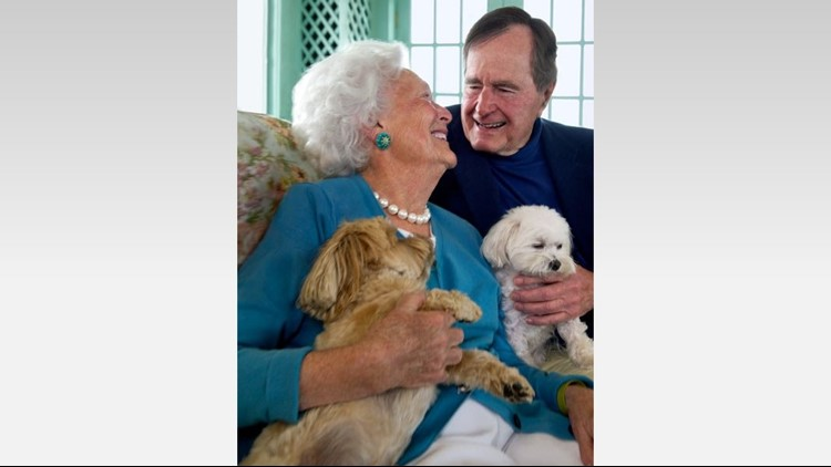 George and Barbara Bush's little dogs, Bibi and Mini Me, are now living with 41's longtime executive assistant in Houston. (George Bush Presidential Library)